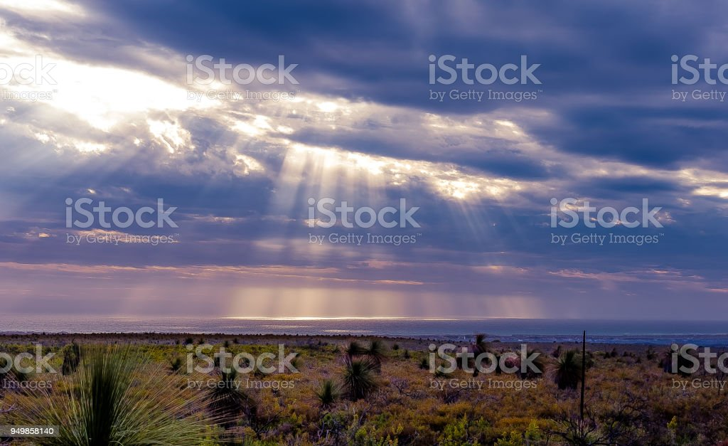 twilight scene of australian bush and ocean scene with sunbeams on the indian ocean stock photo