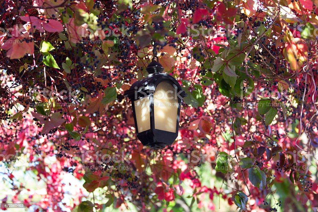 twilight street lamp royalty-free stock photo