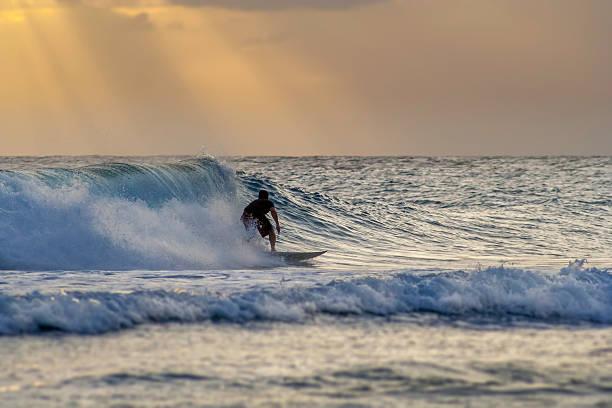 Twilight Surfing stock photo