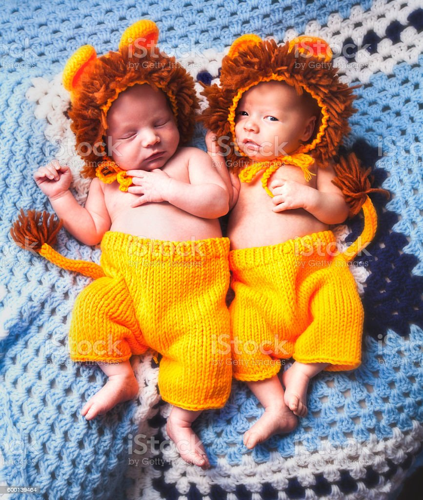 Twin Baby Boys Dressed as Lion Cubs stock photo