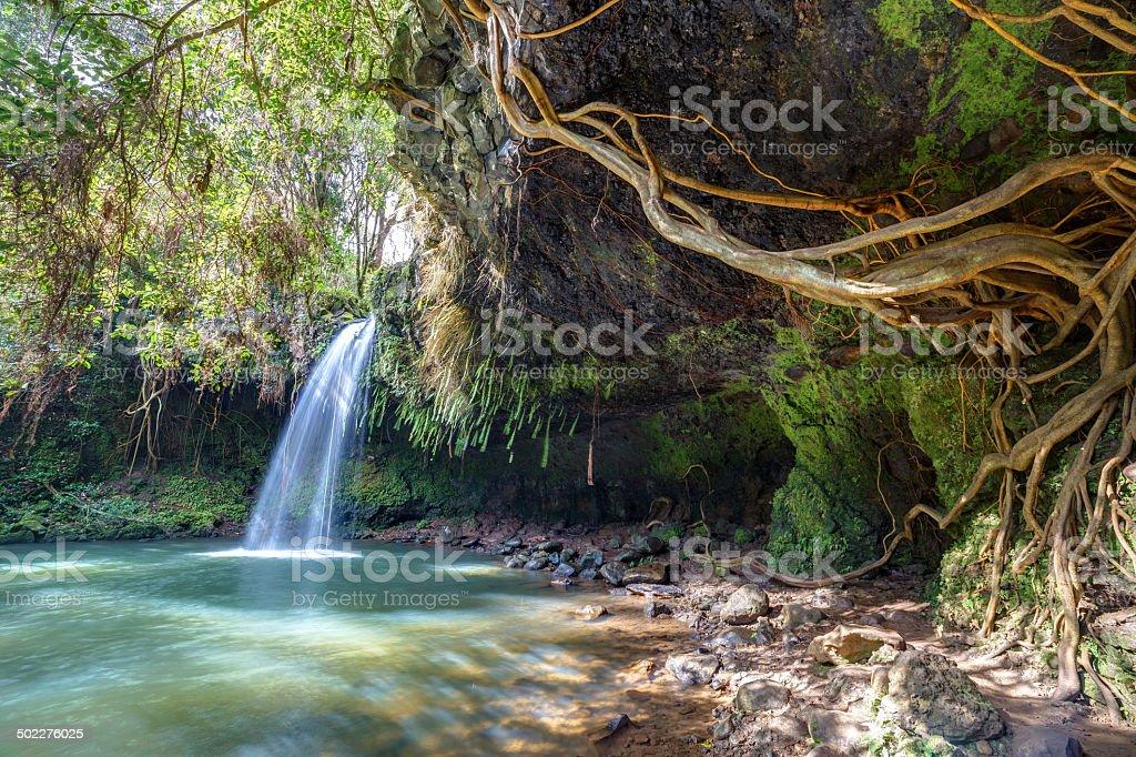 Twin falls wilderness stock photo