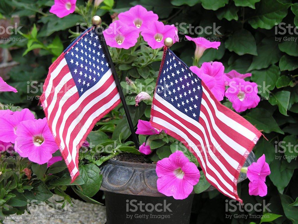 Twin Flags stock photo
