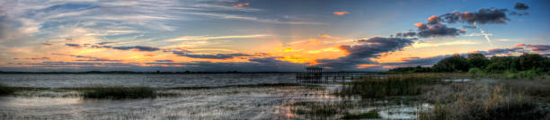 twin oaks conservation area sunset panorama - kissimmee stock photos and pictures