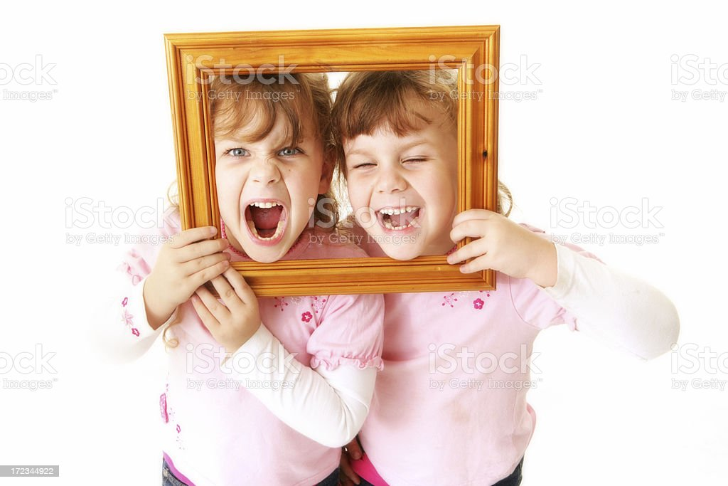 Twin Picture royalty-free stock photo