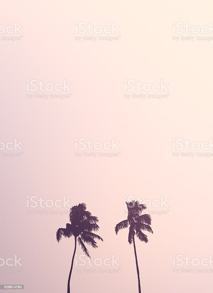 Twin Retro Palm Tree Silhouettes stock photo
