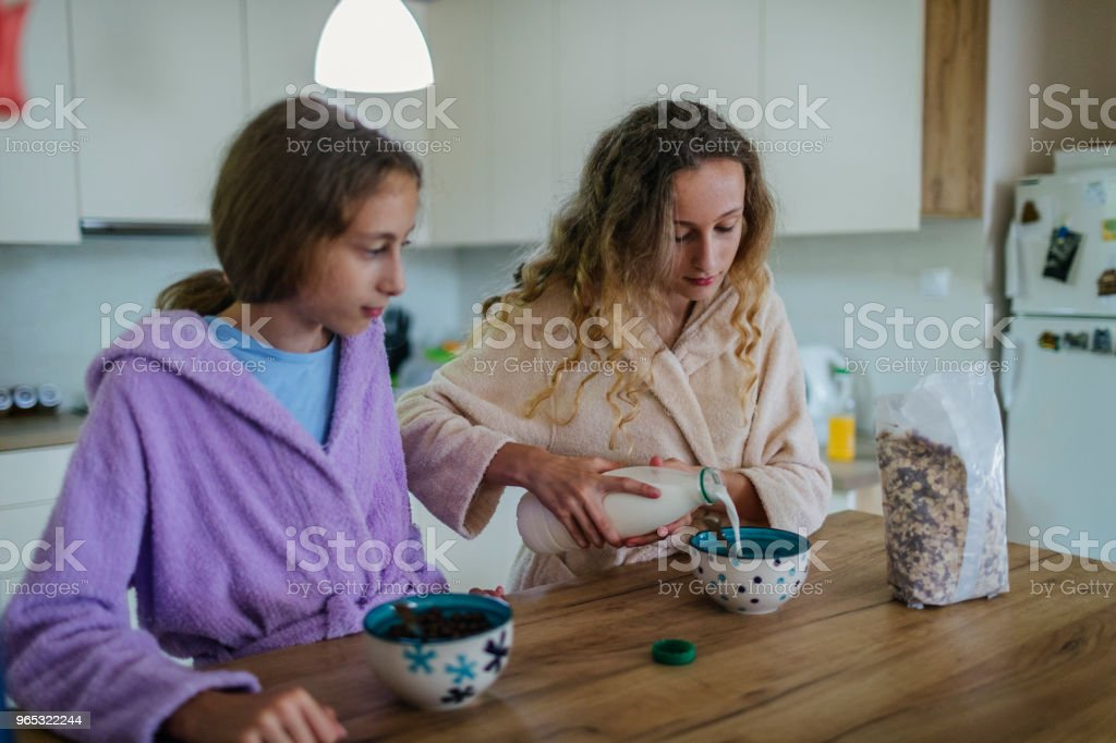 Twin Sisters At Home royalty-free stock photo