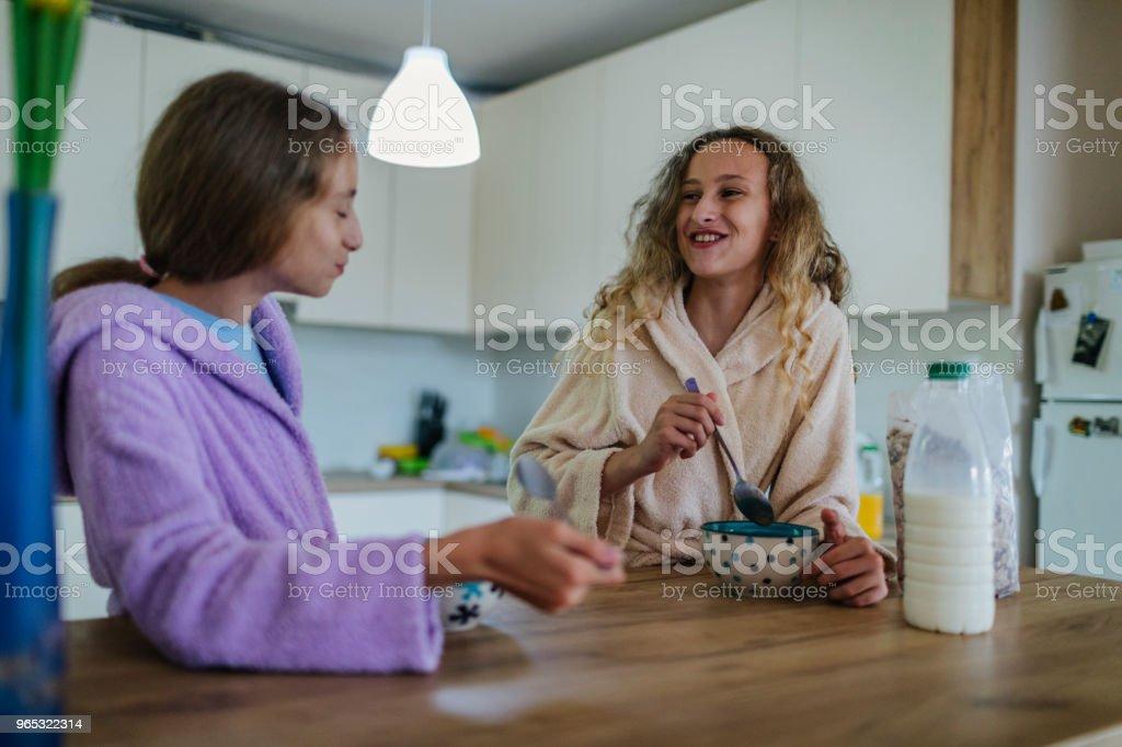 Sœurs jumelles à la maison - Photo de 14-15 ans libre de droits