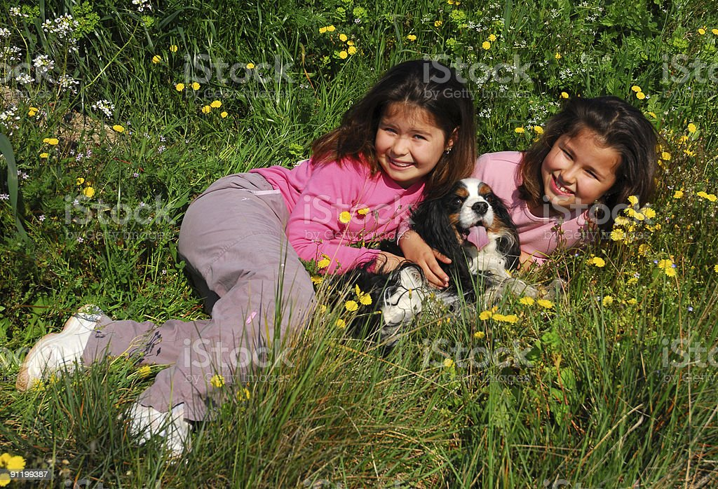 twins and little dog stock photo