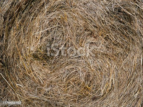 A twisted pile of hay or straw. Tightly Packed for outdoor storage. Texture, background