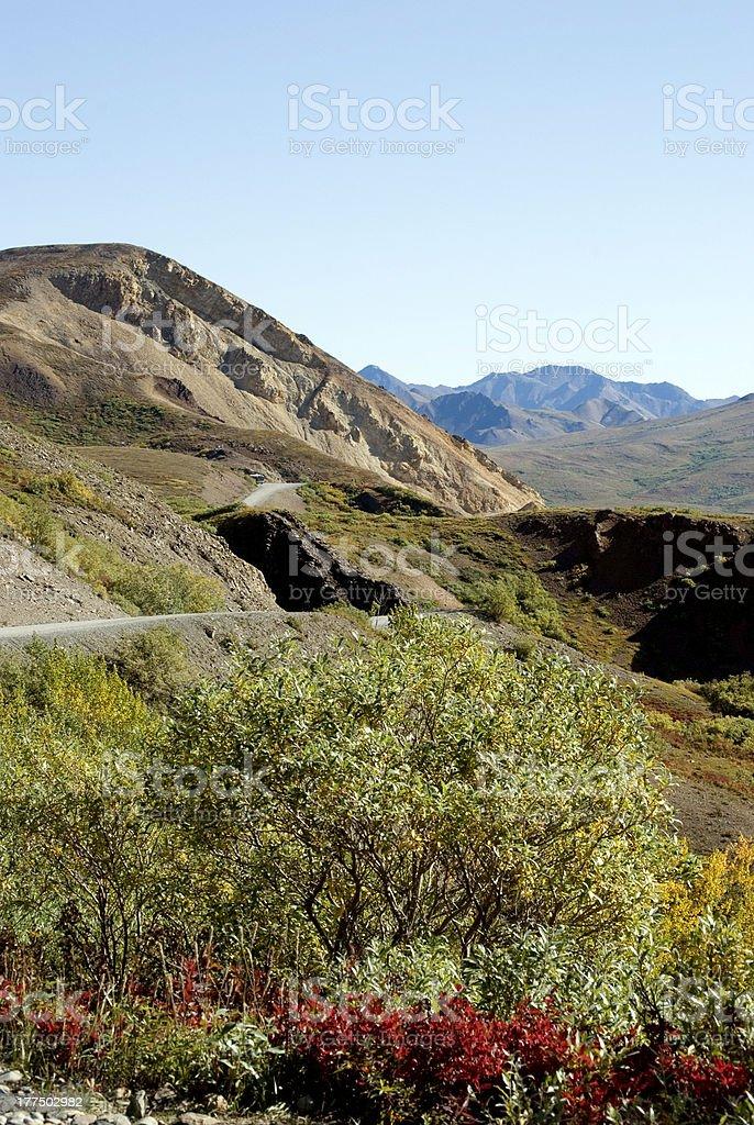 Twisting Denali Park Road royalty-free stock photo