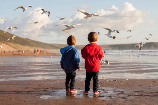 Two adorable kids, feeding the seagulls