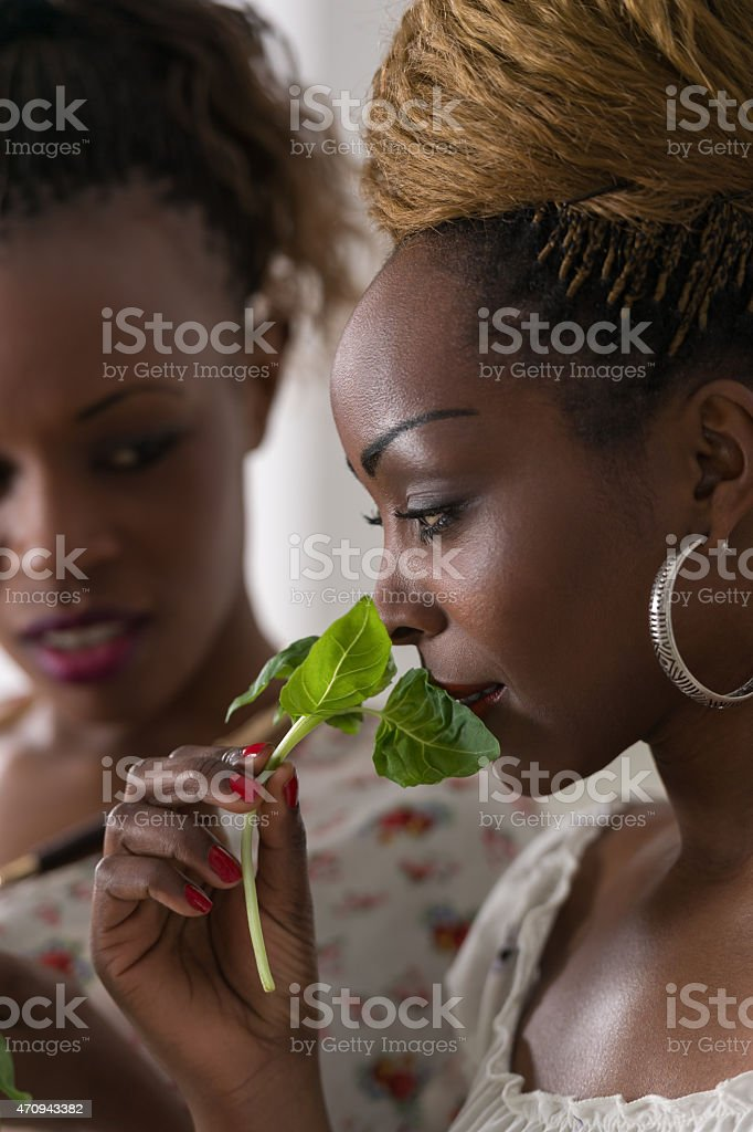 Two african ladies cooking at home stock photo