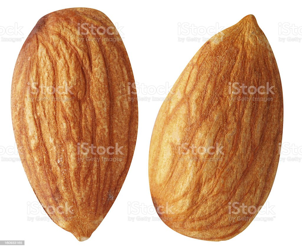 Two almonds isolated on a white. royalty-free stock photo