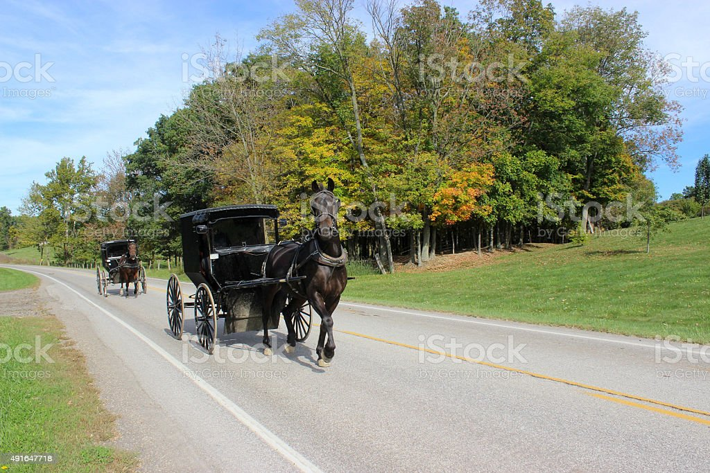 Two Amish Horse and Buggies on Road in Countryside in Ohio stock photo