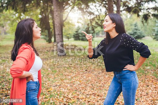istock Two angry women friends arguing in park 1025336118