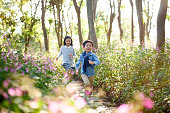 two little asian children boy and girl running through field of flowers in park.