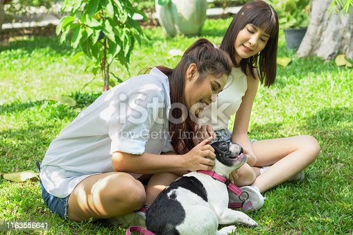 istock two asian young beautiful woman playing with french bulldog puppy in park outdoor 1163556641