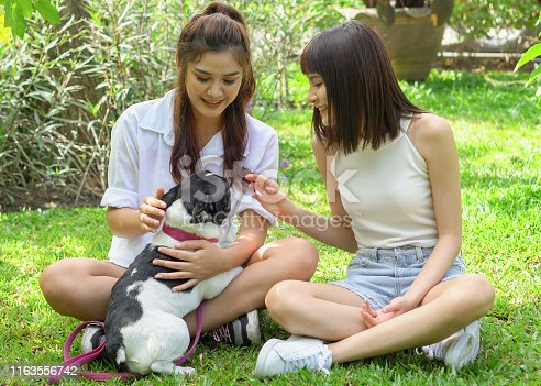 istock two asian young beautiful woman playing with french bulldog puppy in park outdoor 1163556742