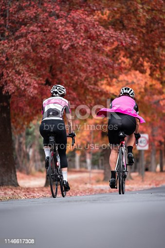 Melbourne, Australia - April 16, 2019: Two cyclists cycling through road covered by autumn colored trees.
