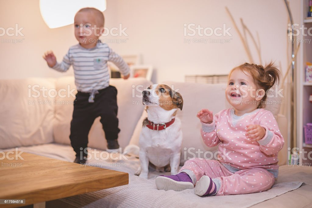 two babies and a dog in a livingroom stock photo