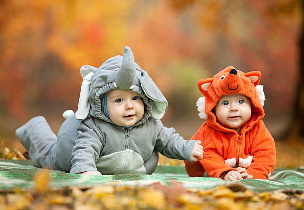 Two baby boys dressed in animal costumes stock photo