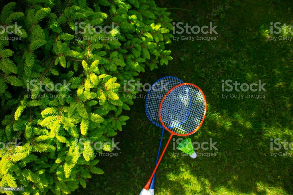 Two badminton racket on the sunny bright grass green fresh background. stock photo