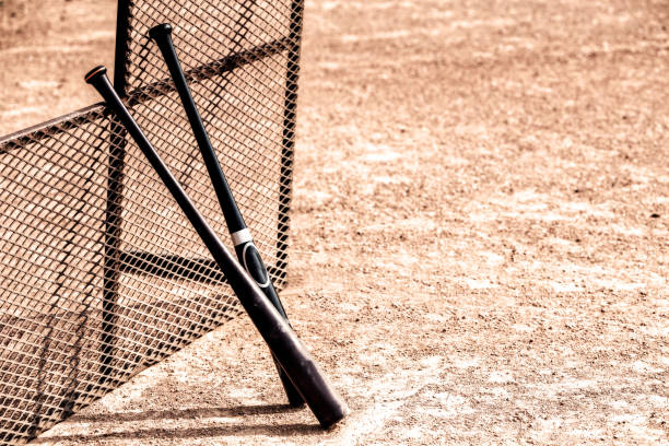 two baseball bats - baseball bat stock photos and pictures