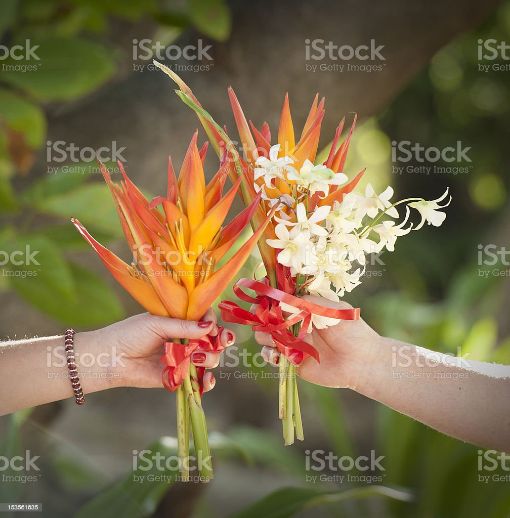 Two Beautiful Bird Of Paradise Flower Bouquets stock photo | iStock