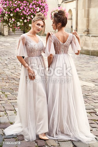 Beautiful bridesmaids in gorgeous light silver dresses in old beautiful European city on a wedding day in summer. Dresses are floor length or full-lenghth long tulle with half sheer sleeves and side slit.