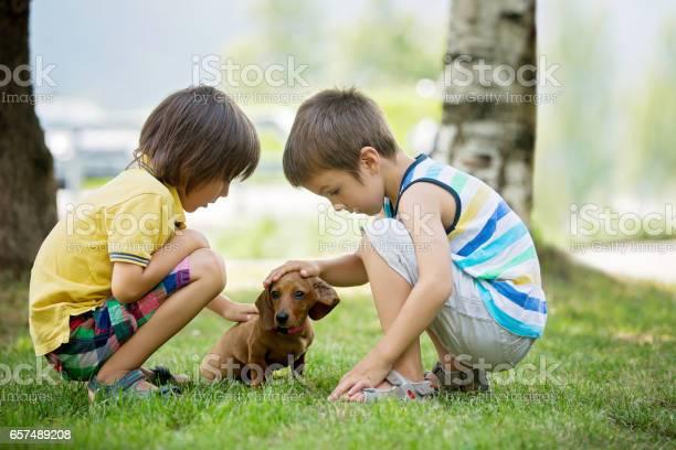 Two beautiful preschool children boy brothers playing with little pet picture id657489208?b=1&k=6&m=657489208&s=612x612&h=dob gga7cmefjkge5om5i ctyb51ekya8opddqqw8u0=
