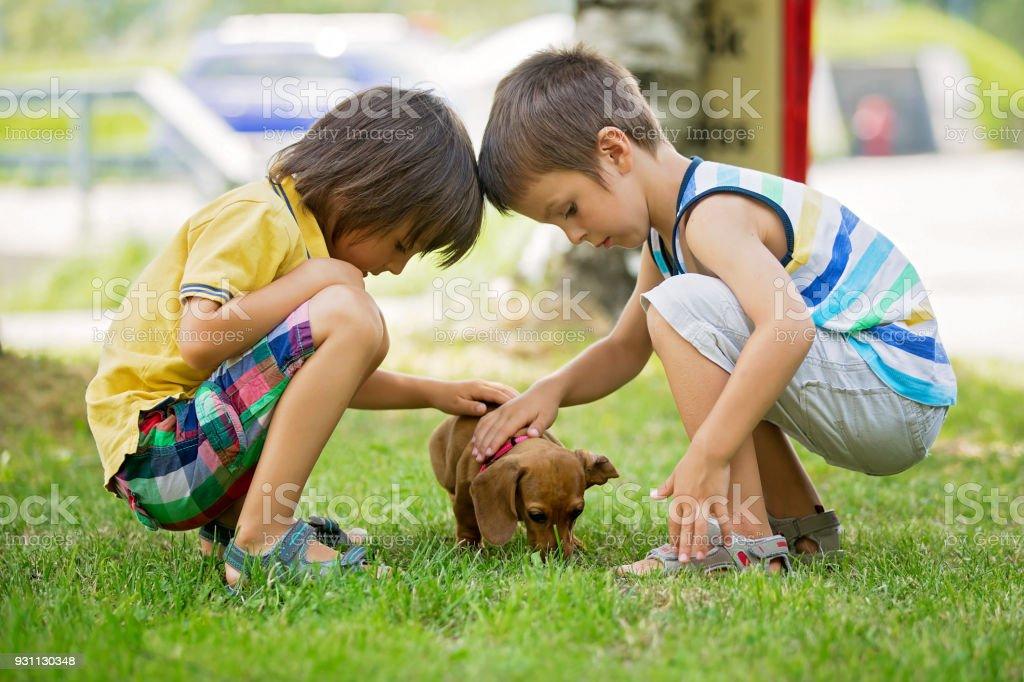 Parkta küçük evde beslenen hayvan köpek ile oynarken iki güzel okul öncesi çocuk, erkek kardeşler, - Royalty-free Aydınlık Stok görsel