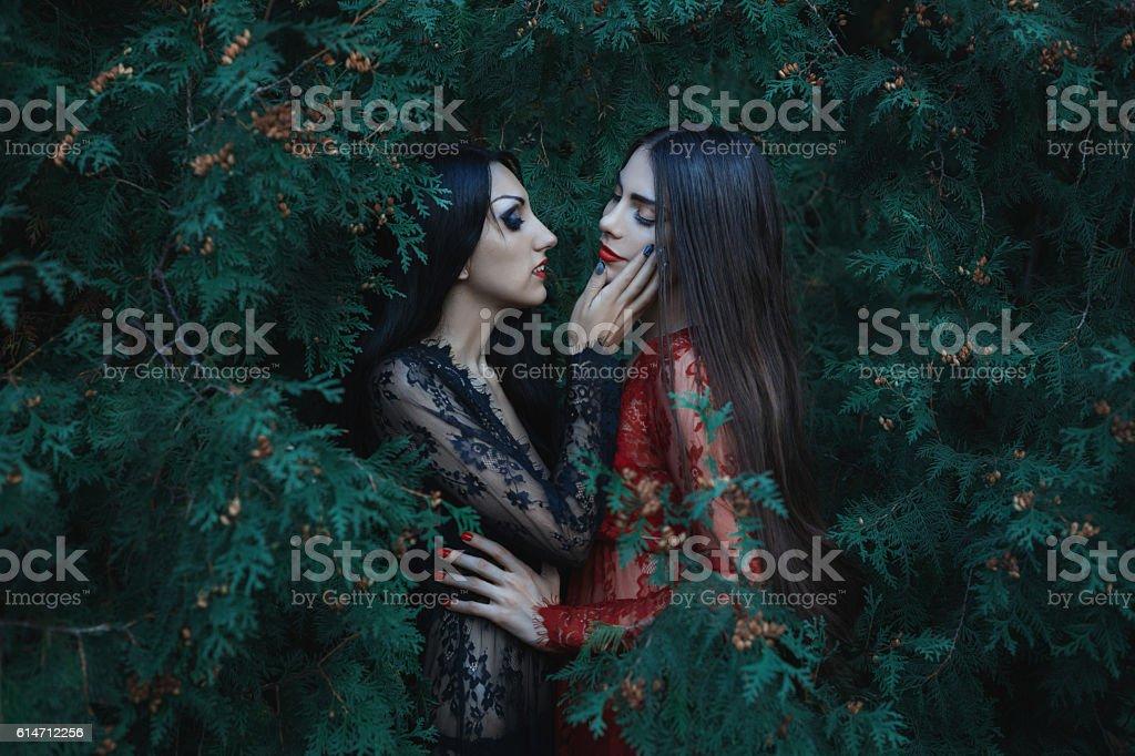 Two beautiful women lover. stock photo