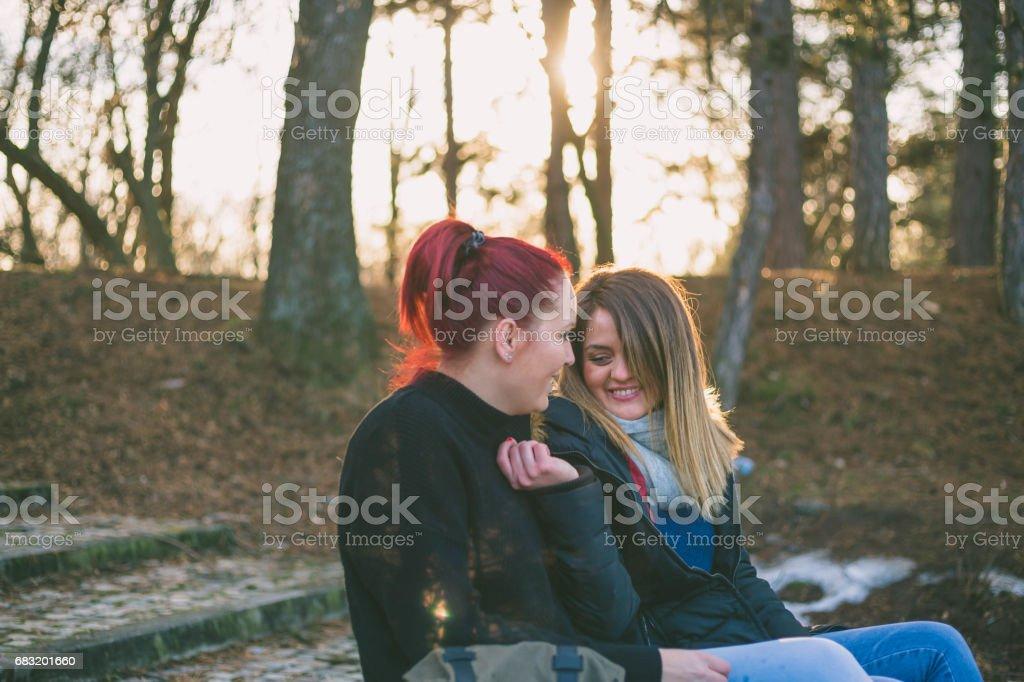 두 아름 다운 젊은 여자는 공원에서 벤치에서 휴식 royalty-free 스톡 사진