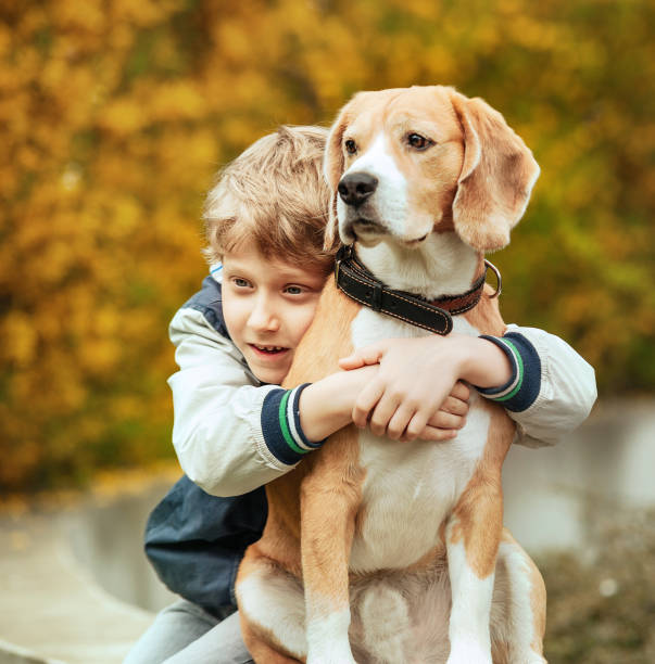 Two best freinds portrait little boy hugs beagle dog picture id872605344?b=1&k=6&m=872605344&s=612x612&w=0&h=x9zahhluzoqsphnfosvlpfqv5jc1x tqidd9jcigoja=