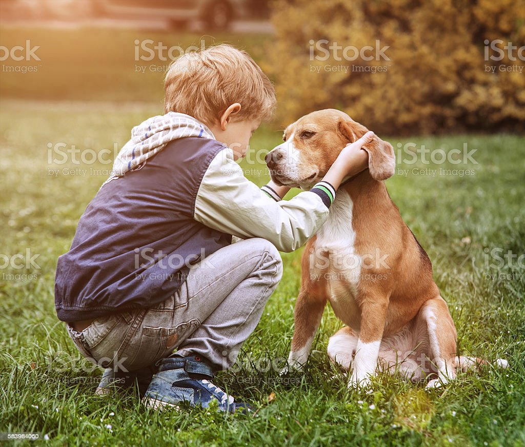Two best friends - boy and his dog stock photo