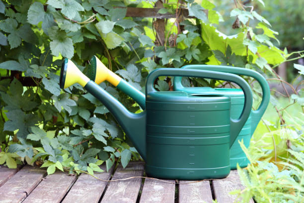 Two Big Green Watering Cans on a Porch of Summer Cottage in Finland stock photo