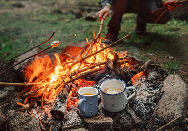 Two big mugs with hot tea and lemon near the campfire place stock photo