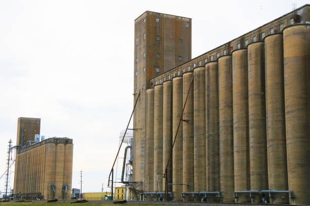two big working agricultural farm community feed grain and corn silo buildings in a small town in rural heartland america perfect for farming and agriculture stock imagery stock photo