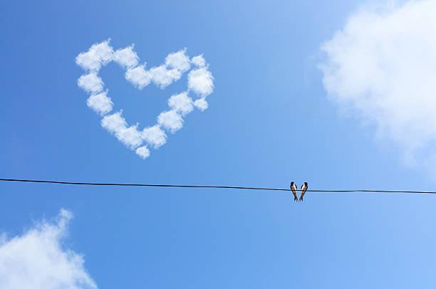 Zwei Vögel auf Draht hängen unter blauen Himmel mit Liebe  – Foto