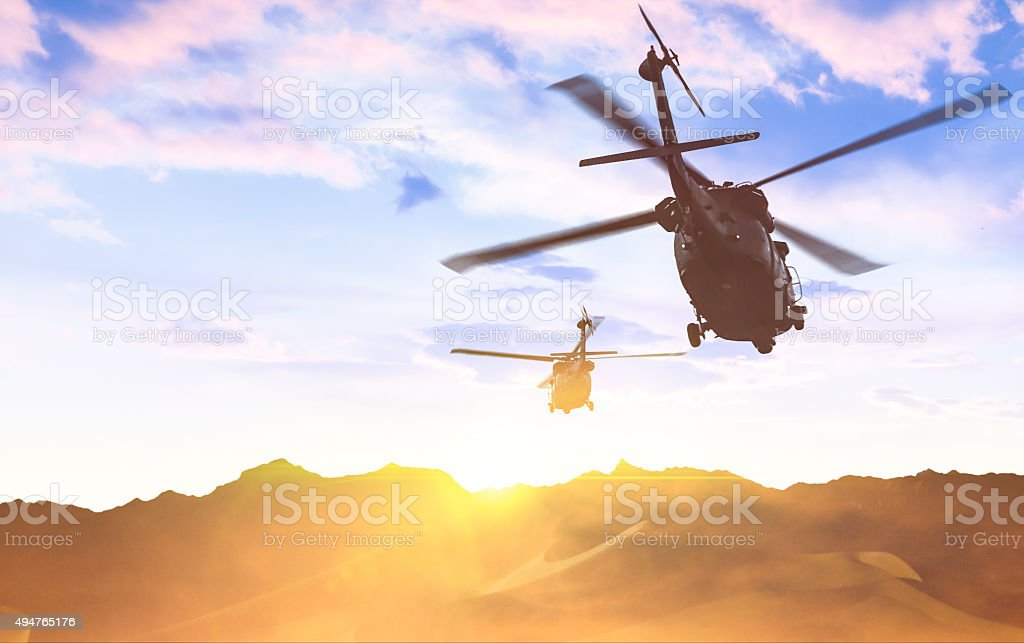 Two Black Hawks stock photo