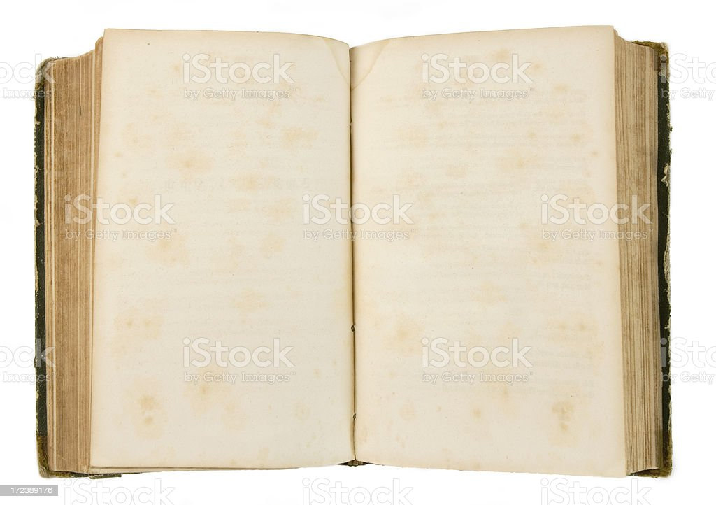 Two blank Pages in ancient Book royalty-free stock photo