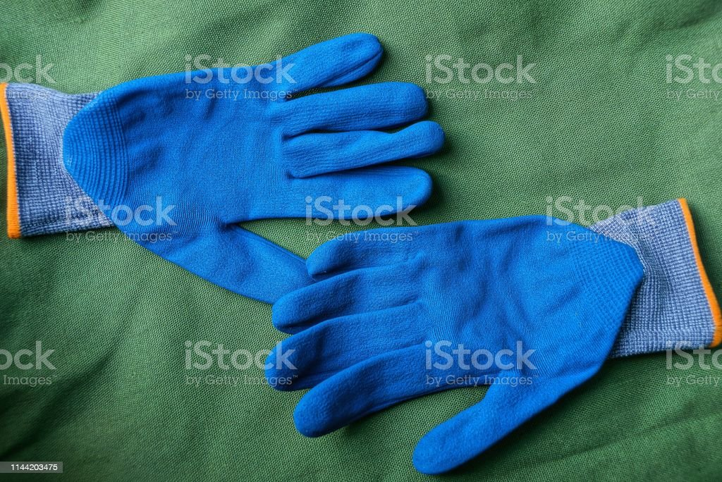 two new blue work gloves lay on green matter