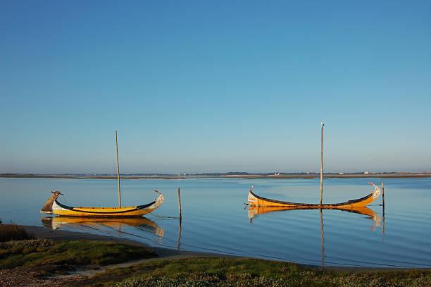 dois barcos e uma gaivota. - aveiro imagens e fotografias de stock
