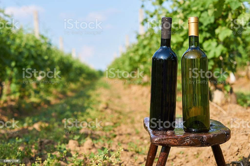 Two bottles of vine witout label. stock photo