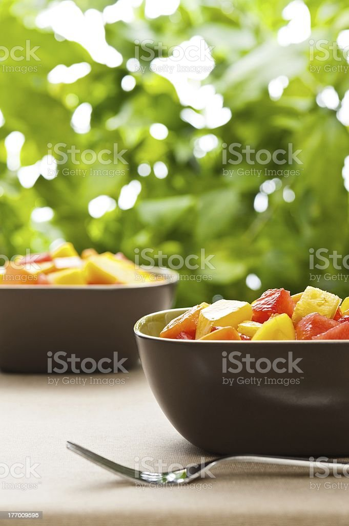 Two bowl of Mixed tropical fruit salad royalty-free stock photo