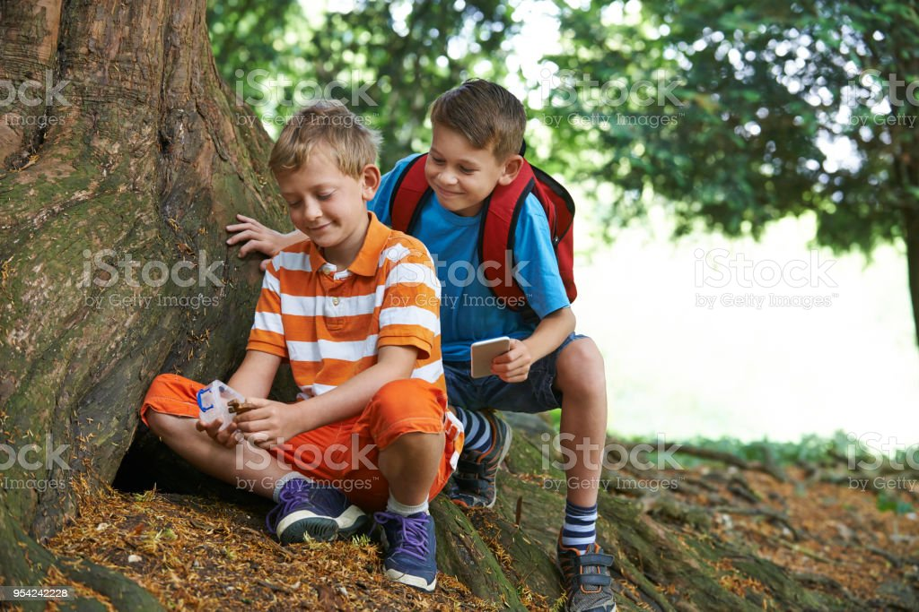 Two Boys Finding Item Whilst Geocaching In Forest stock photo