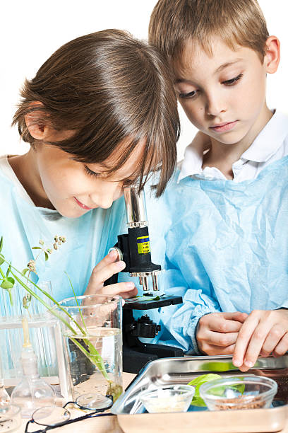 Two boys look through microscope with more samples nearby stock photo