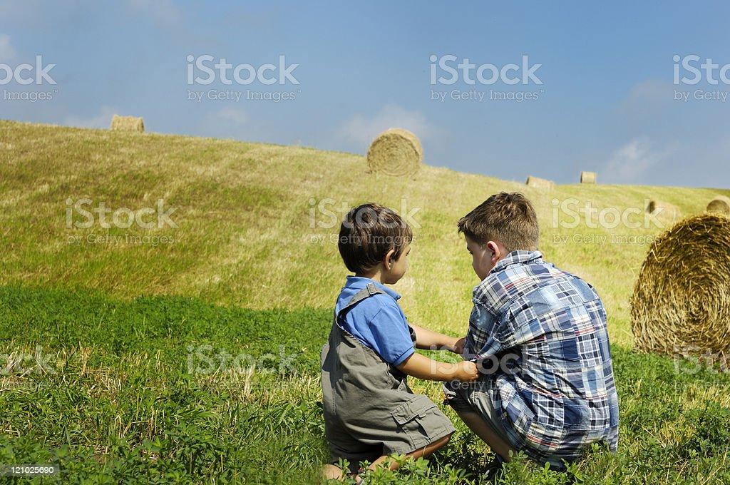 Two boys on a farm royalty-free stock photo