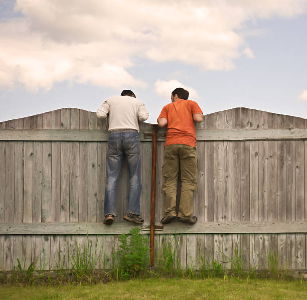 Zwei Jungen auf dem Zaun suchen smth – Foto