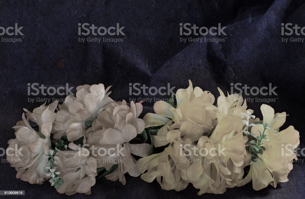 two branches faded wall colors stock photo